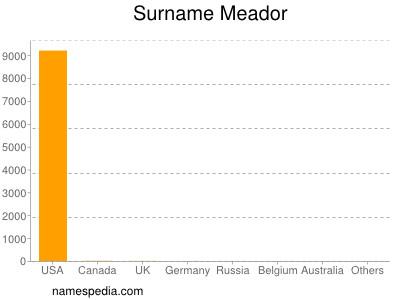 Surname Meador