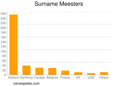 Surname Meesters