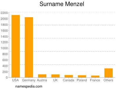 Surname Menzel