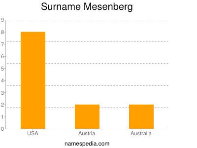 Surname Mesenberg