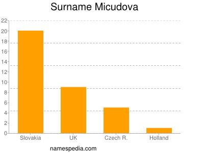Surname Micudova