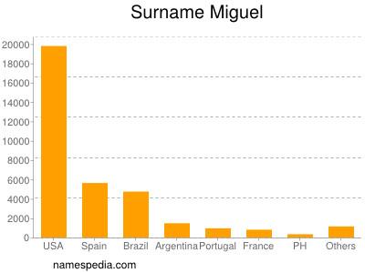 Surname Miguel