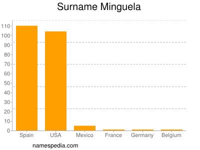 Surname Minguela