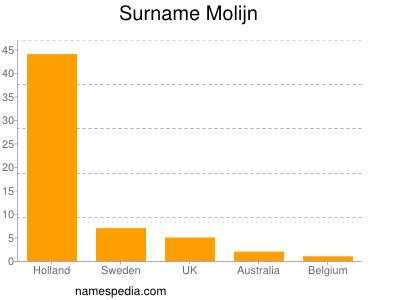Surname Molijn