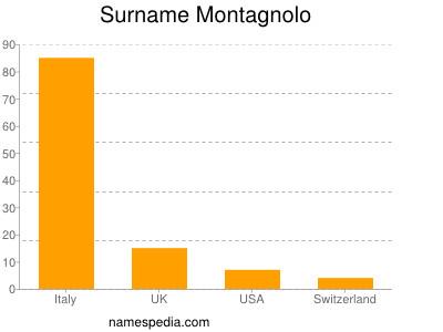 Surname Montagnolo