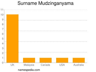 Surname Mudzinganyama