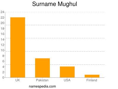 Surname Mughul