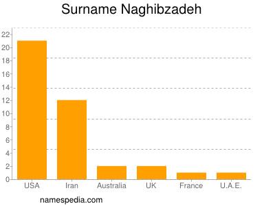 Surname Naghibzadeh