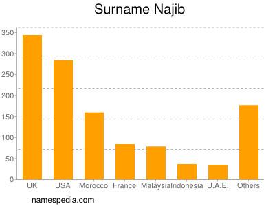 Surname Najib