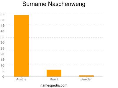 Surname Naschenweng