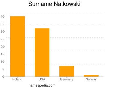 Surname Natkowski