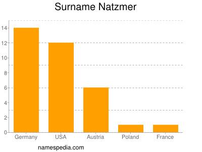Surname Natzmer