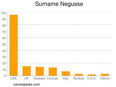 Surname Negusse