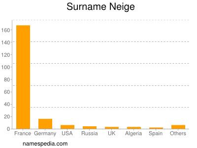 Surname Neige
