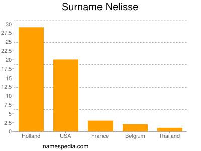 Surname Nelisse