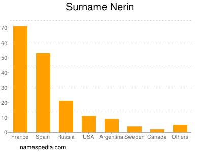 Surname Nerin