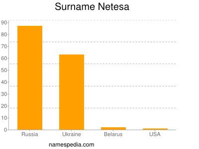 Surname Netesa