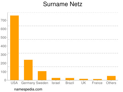 Surname Netz