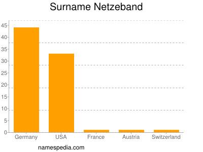 Surname Netzeband