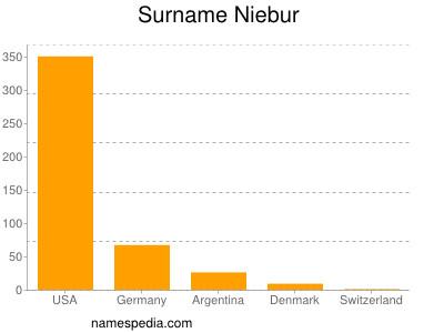 Surname Niebur