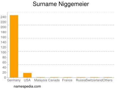 Surname Niggemeier