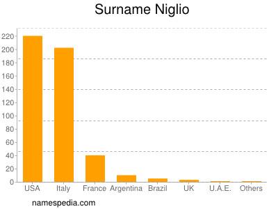 Surname Niglio