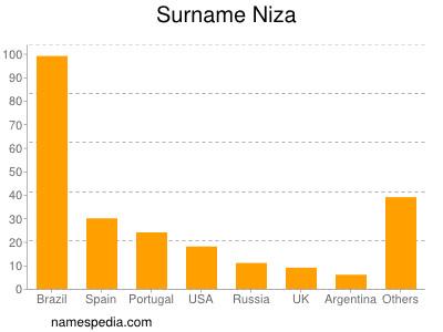 Surname Niza