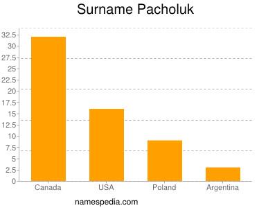 Surname Pacholuk