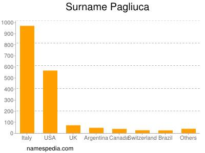 Surname Pagliuca
