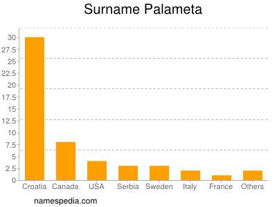 Surname Palameta
