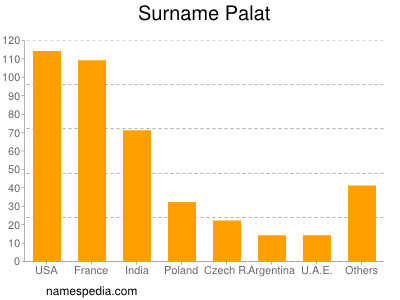 Familiennamen Palat