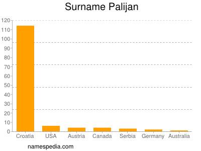 Familiennamen Palijan