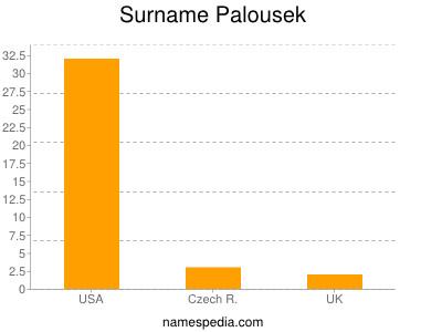Surname Palousek