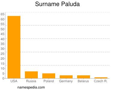 Surname Paluda