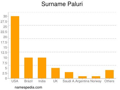 Surname Paluri