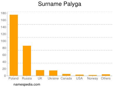 Surname Palyga