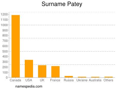 Surname Patey