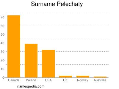 Surname Pelechaty