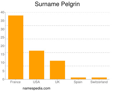 Surname Pelgrin