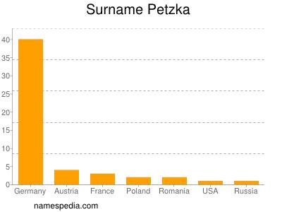 Surname Petzka