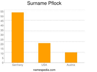Surname Pflock