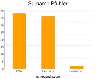 Familiennamen Pfuhler