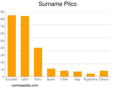 Surname Pilco