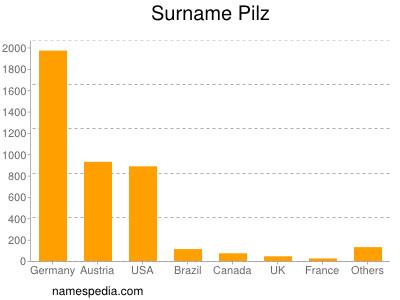 Surname Pilz