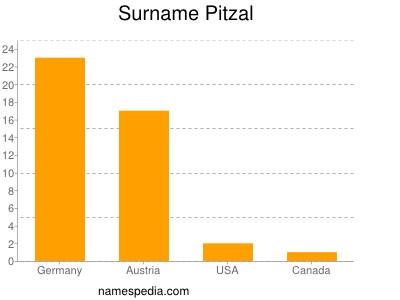 Surname Pitzal