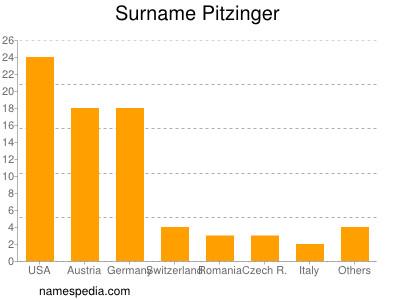 Surname Pitzinger