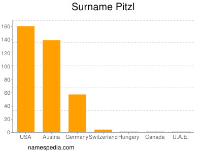 Surname Pitzl