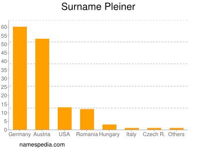 Surname Pleiner