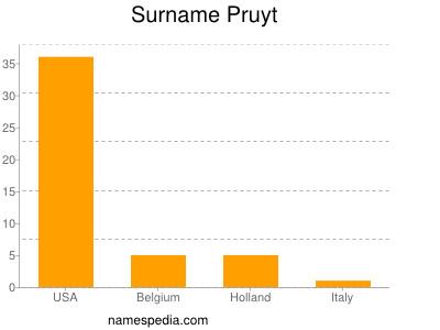 Surname Pruyt