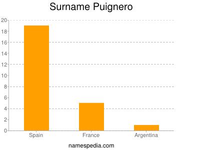 Surname Puignero